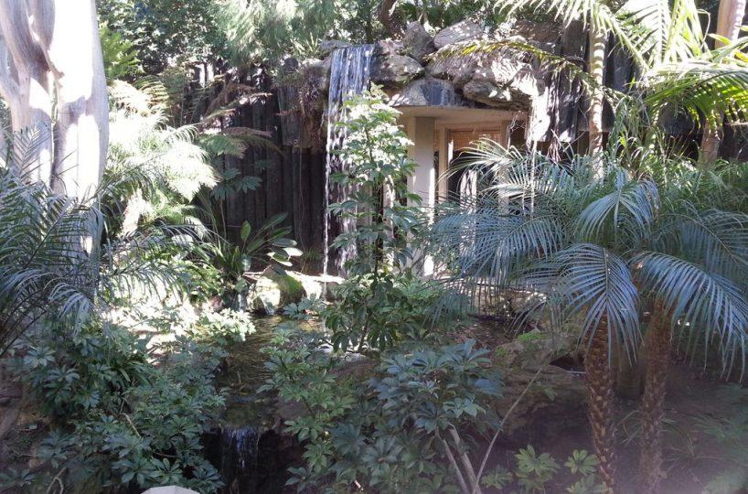 B-126 waterfall and lush greens
