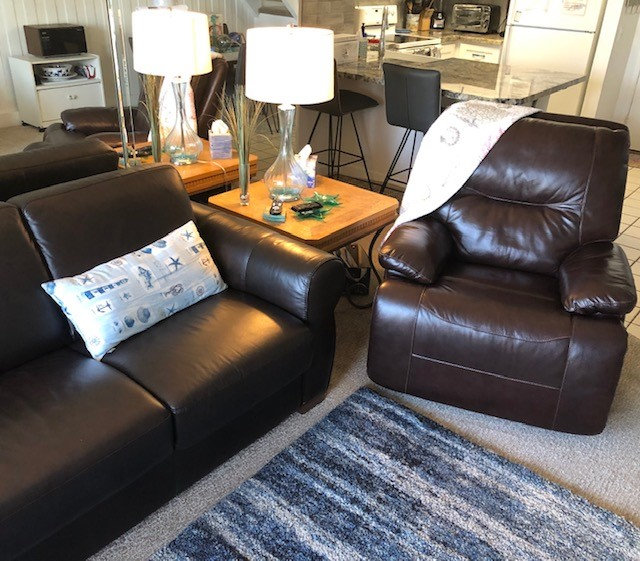 D-305 brown leather seating, and throw rug